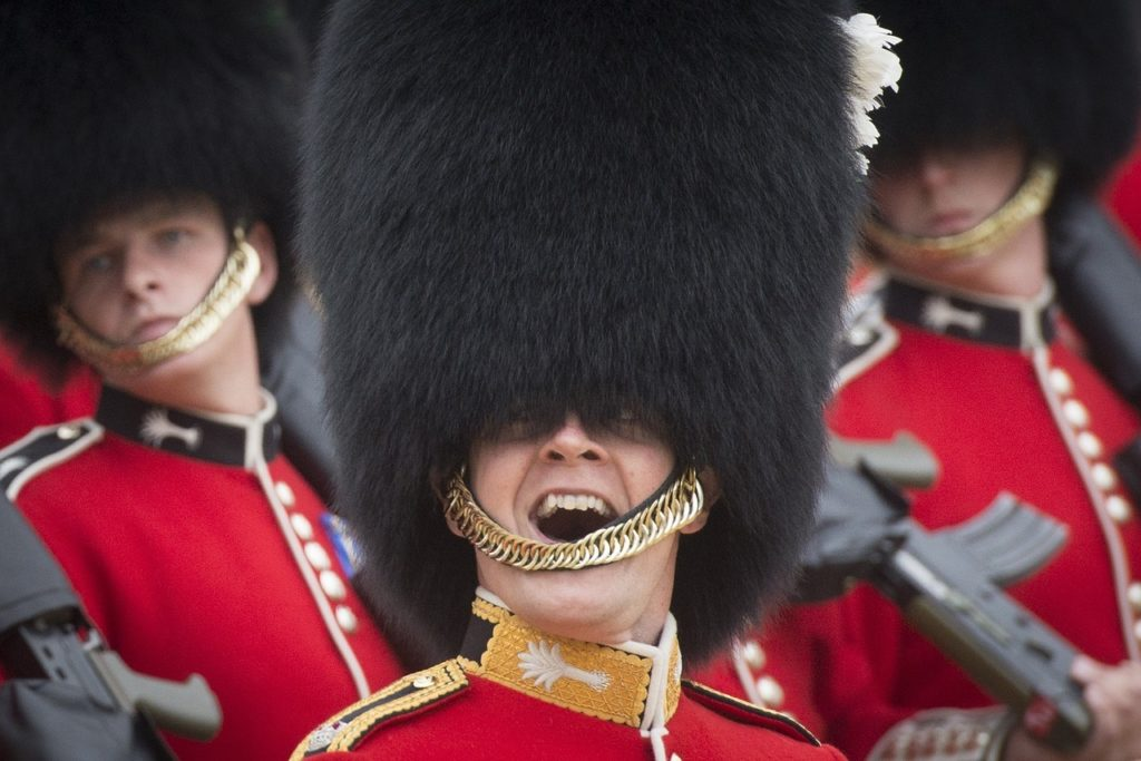 Welsh Guard, Tours of the UK, Public Sightseeing Walking Tour of Central London, Whitehall, & Westminster
